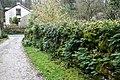 Wall, Slack Head - geograph.org.uk - 364158.jpg
