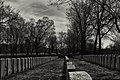 War Graves - Mount Royal Cemetery.jpg