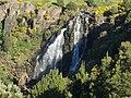 Waratah Falls 20171121-070.jpg