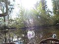Water Spiral Bushy Park.jpg