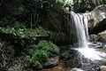 Waterfall (3746586168).jpg