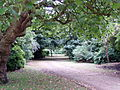 Wavertree Botanic Garden 24.JPG