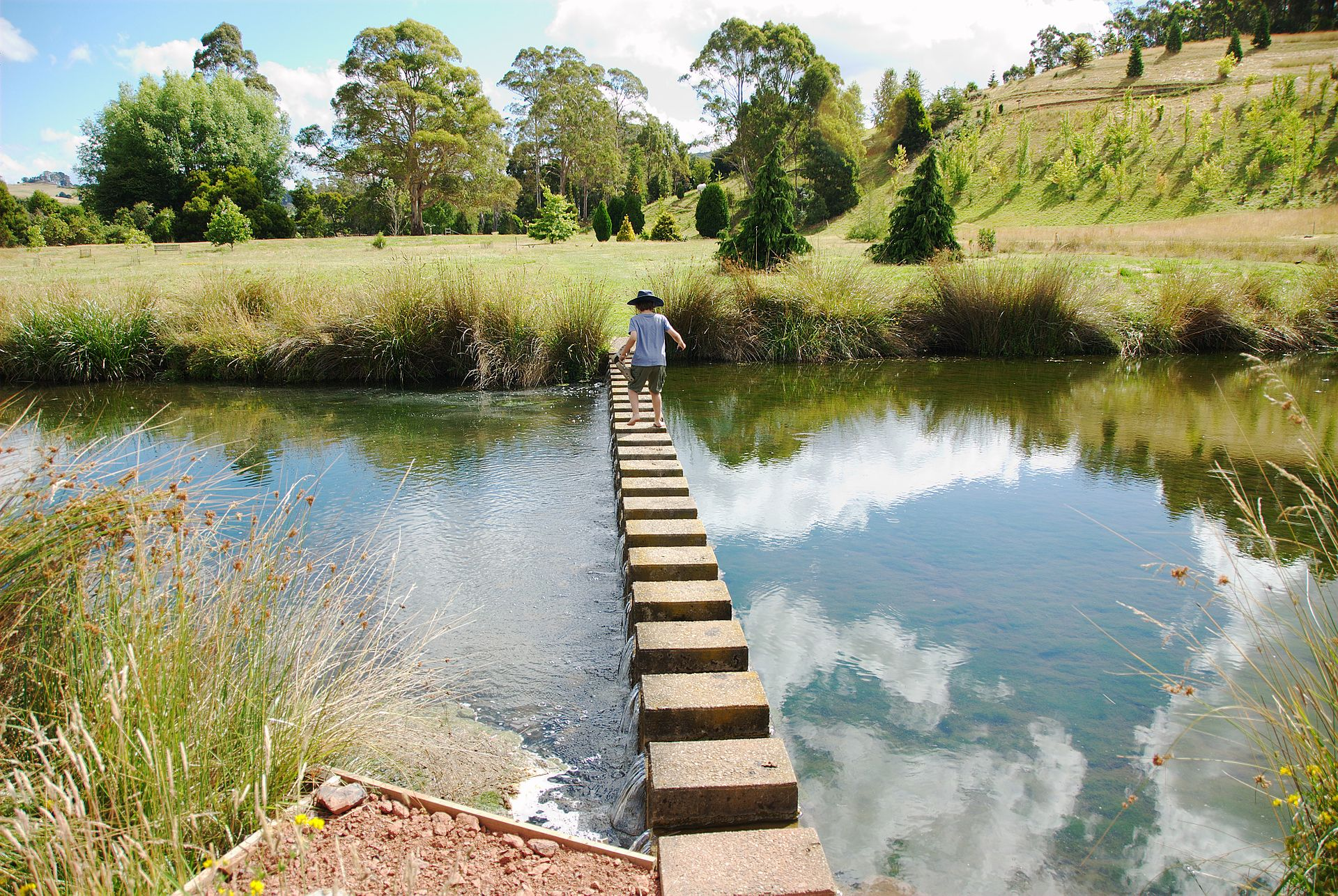 Free Dating Sites >> The Tasmanian Arboretum - Wikipedia