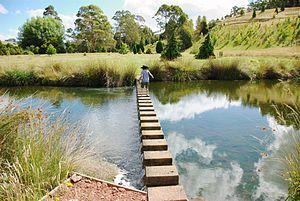 The Tasmanian Arboretum - Small boy crossing a weir in the Tasmanian Arboretum