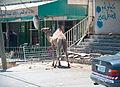 West Bank-29.jpg
