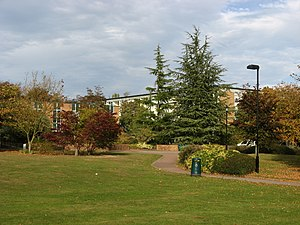 Westwood (Campus) - A central grassy area of Westwood