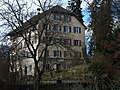 Wetzikon - Schloss IMG 5002.jpg
