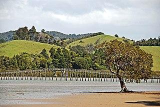 Whananaki Place in Northland Region, New Zealand