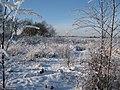 Winterplaatje - panoramio.jpg