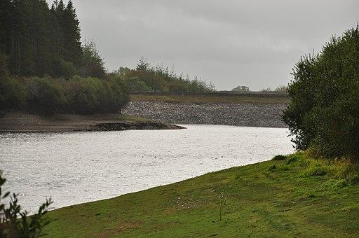 Wistlandpound Reservoir (1140)
