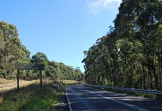 Wombat State Forest Protected area in Victoria, Australia