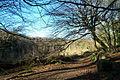 Woodland - geograph.org.uk - 502097.jpg