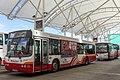 Wright bus-Volvo B10BLE in Cork.jpg