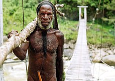Dani tribesman in the Baliem Valley