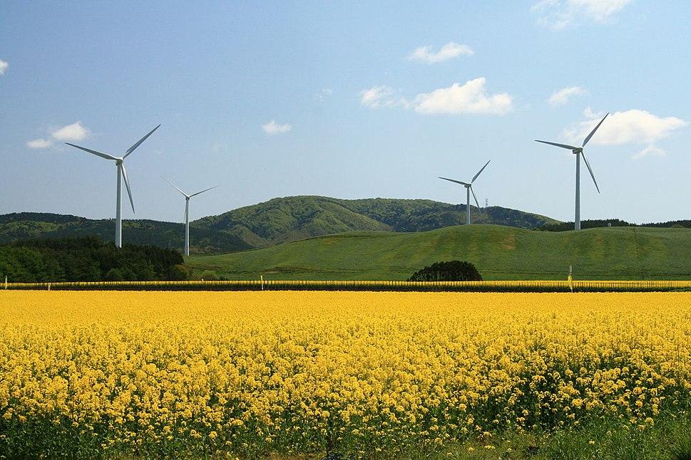 Yokohama wind farm