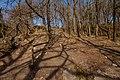 Ystradfellte, Wales IMG 0119.jp - panoramio.jpg