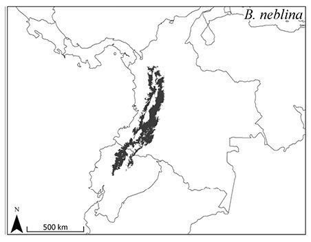 ZooKeys-distribution of B. neblina