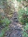 """Bruce Trail"" (34779322761).jpg"