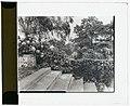 """""""Près Choisis,"""" Albert Herter house, Georgica Pond, East Hampton, New York. Steps from boat landing to blue and white garden terrace LCCN2008679222.jpg"""