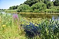 's-Hertogenbosch, Netherlands - panoramio (3).jpg