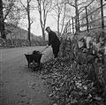 (Richard Humphreys clearing leaves from the road in Ganllwyd) (6302310805).jpg