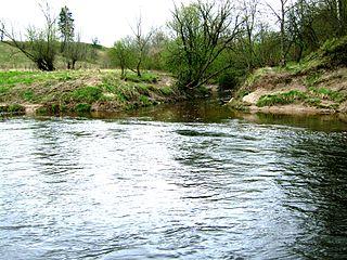 Устье реки Шуния. Foto:Andrjusgeo at lt.wikipedia