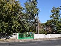 Ботанічний сад ЧНУ ім. Б. Хмельницького P1090847.jpg