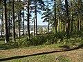 В заповеднике - panoramio.jpg