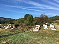 Гробишта во Дулица 2.jpg