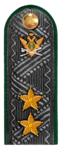 Действительный государственный советник РФ 2 класса ФССП.png