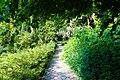 Київ, Ботанічний сад Національного аграрного університету, Героїв Оборони вул.jpg