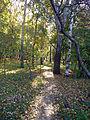 """Осень в парке """"Швейцария"""".jpg"""