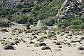 Парашют. Пляж Цампика. Rhodos. Greece. Июнь 2014 - panoramio.jpg