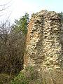 Руїни замку (мур.), с.Тайкури, 3.JPG