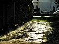 Солнце после дождя. Молодечно. Sunshine after the rain. Maladziechna. - panoramio.jpg