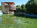 نمای دیگری از سراب عباس آباد در شازند - panoramio.jpg