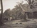 ഉരുക്കൾ വലിക്കുന്ന ചക്ക് (1900).jpg