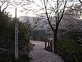 うつぶな公園 - panoramio (27).jpg