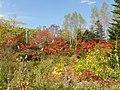 さかもと公園①(Sakimoto Park①) - panoramio.jpg