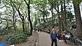 井の頭公園 - panoramio (26).jpg