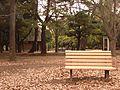 代々木公園 Yoyogi Park - panoramio.jpg