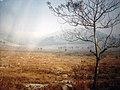 北山 - panoramio.jpg