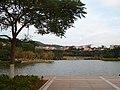 厦大芙蓉湖 - Lotus Lake - 2013.01 - panoramio.jpg
