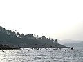太湖县花亭湖景色-飞鸟 - panoramio.jpg