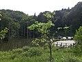 小山内裏公園池と展望テラス - panoramio.jpg