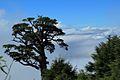 崑陽眺望山景 - panoramio.jpg