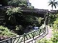 陽明山瀑布區風景點 - panoramio - Tianmu peter (1).jpg
