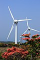 青山高原の風車(The windmills of Aoyama Heights) - panoramio - kou nari.jpg