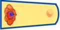 한국 광복군 준위 계급장.PNG