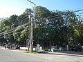 0130jfCuyapo Barangays Districts One Market Nueva Ecijafvf 20.JPG